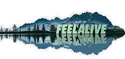 Feelalive.pl